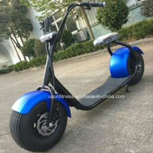 Fashion Harley Electric Scooter Hoverboard Segboard Seg Way with 1000W Motor pictures & photos