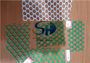 Wire Mesh Plastic for Poultry House Chicken Floor