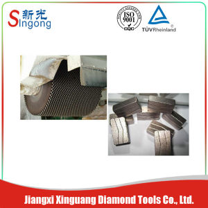 Most Popular Granite Cutting Sagment pictures & photos