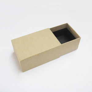 Paper Shoe Box with Colour Printing (new012) pictures & photos