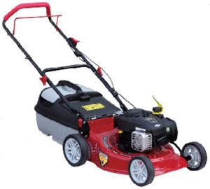 "18"" (46CM) Professional Gasoline Garden Lawn Mower (GLM125BS)"
