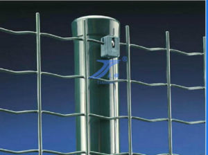 European Style Beautiful Euro Fence with High Quality pictures & photos