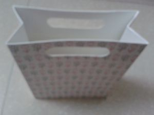 OEM Art Paper Shoe Bag with Good Quality pictures & photos