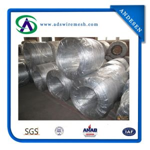 High Quality Galvanized Iron Wire (ADS-GW-01) pictures & photos