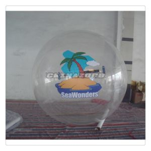 Customzied Paintings Inflatable Water Walking Human Sphere Ball pictures & photos