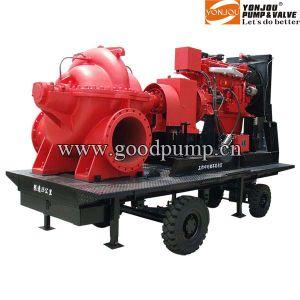 Diesel Engine Pump pictures & photos