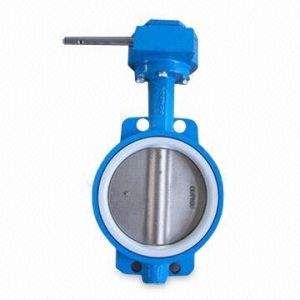Carbon Steel Butterfly Valve Worm Gear pictures & photos