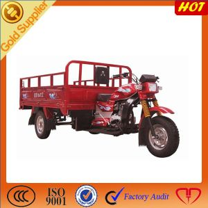 New Cargo Tricycle pictures & photos
