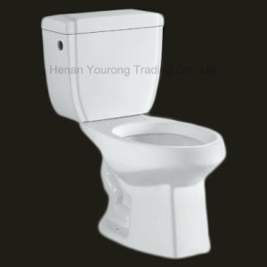 Siphonic Two-Piece Toilet (No. YR13)