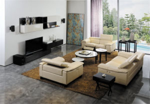 Living Room Sofa with Modern Genuine Leather Sofa Set (427) pictures & photos