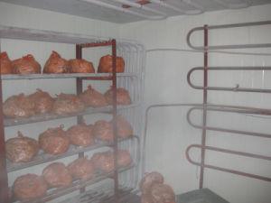 -5′c~ -40′c Meat Blast Freezer pictures & photos