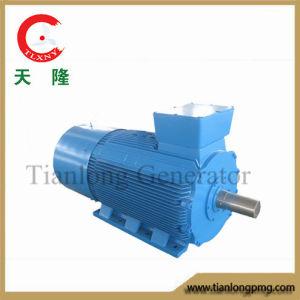 Ff-300kw/350rpm/AC690V Permanent Magnet Alternator (PMG/PMA/Hydro)