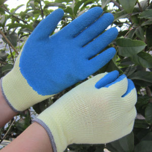 Blue Latex Coated Gloves Safety Garden Hand Work Glove pictures & photos