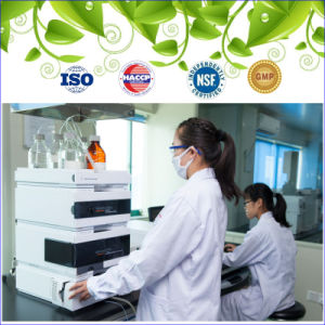 GMP Certified Health Food Tablet Vitamin D3 Factory pictures & photos