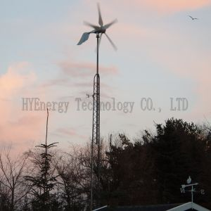 Hye 1500W Wind Generator Grid Tied Power System