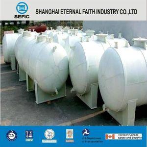 Sefic Cryogenic Liquid Nitrogen Tank (CFL-20/0.8) pictures & photos