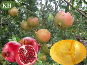 100% Fresh Cosmetic Vegetable Oil/Pomegranate Seed Oil (CAS No: 84961-57-9) pictures & photos