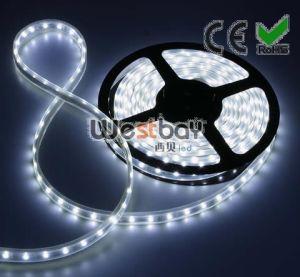 SMD5050 Flexible LED Strip