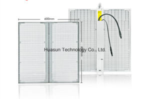 Windows Project Glass LED Display LED Screen Transparent pictures & photos