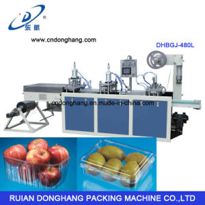 Factory Direct Plastic Fruit Tray Container Forming Machine (DHBGJ-350L) pictures & photos