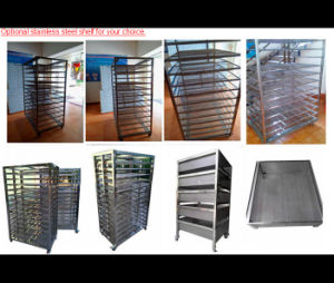 Hot Selling Cassava Chips Mesh Belt Dryer Machine pictures & photos