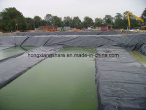 PE Geomembrane for Pond Liner and Other Waterproof Project pictures & photos