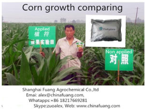 Cotton Plant Hormones 95% Tc Tdz / Thidiazuron pictures & photos