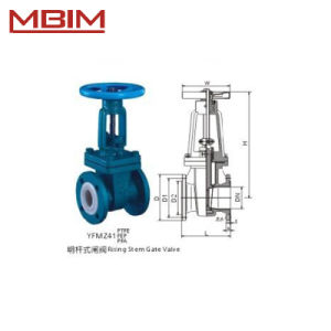 Teflon Lined Gate Valve (DN15-DN500) pictures & photos