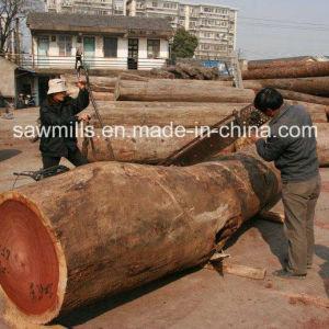 china portable gasoline wood chain saw slasher china
