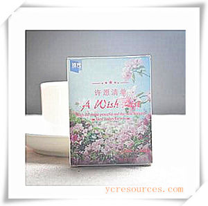 Recordable Postcard for Promotional Gift (OI35001) pictures & photos