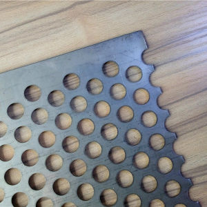 Water Tratement Steel Plate Ss Perforated Metal Mesh pictures & photos