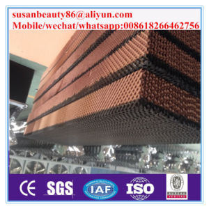 Qingzhou Farm Cooling Pad Environemntal Cooling Pad for Greenhouse /Poultry Farm/Chicken House pictures & photos