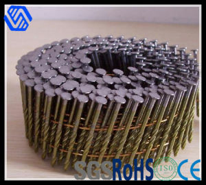 High Quality Competitive Price Dome Head Coil Nails pictures & photos