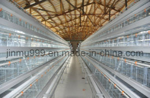 (9LDC-42250-22) Poultry Equipment Frame Chicken Cage for Henhouse pictures & photos