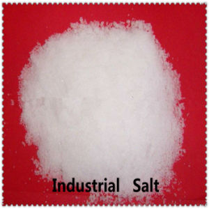 Producter Offer 99% Sodium Chloride/Industrial Salt