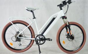 EL-De2613z Electric Bicycle with 26inch Wheel pictures & photos