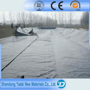 High Quality Geomembrane, Made of HDPE, Surface Is Textured pictures & photos