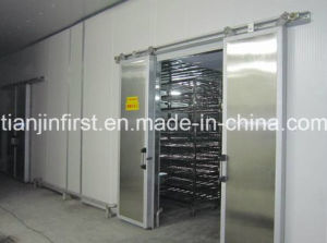 Thawing Equipment for Heating Frozen Meat pictures & photos