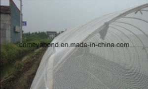 Garden and Greenhouse Use UV Treated HDPE Anti Insect Net pictures & photos