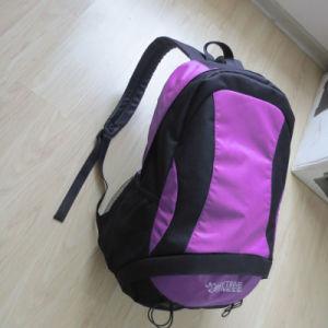 Waterproof Outdoor Hiking Trekking Sport Back Pack Backpacks Bag pictures & photos