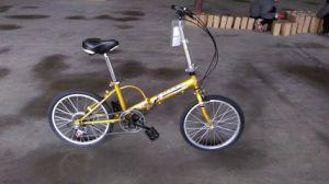 Factory Supplied 16 Inch 6 Speed Steel Frame Folding/Folded Bike (YK-FB-011)