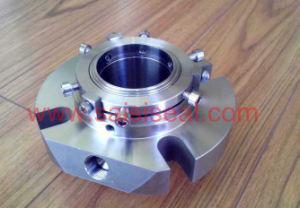 Burgmann Cartex-DN, Cartex Dual Seals pictures & photos
