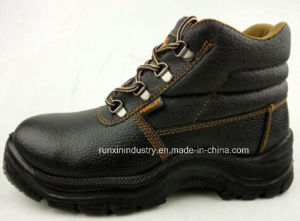 PU Sole Industry Safety Shoe Glt02 pictures & photos