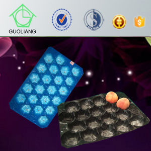 Biodegradable Packaging China Suppliers Custom Black Plastic Tray Fruit Displays pictures & photos