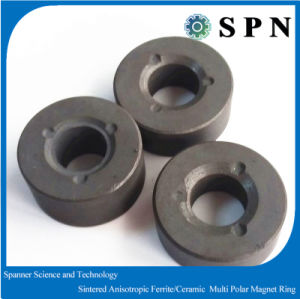Ferrite Ceramic Sinetered Magnet for Dish Washing Machine pictures & photos