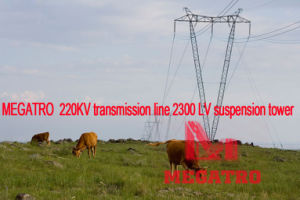 Megatro 220kv Transmission Line Lvi Suspension Tower pictures & photos