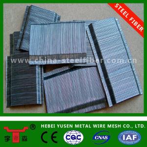 Glued Steel Fiber pictures & photos
