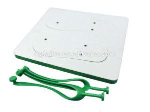 Green Sublimation Plain Flip Flops pictures & photos