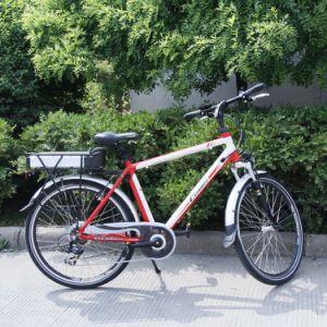 250 Watt Electric Moped Mountain E-Bike (CB-26M02) pictures & photos