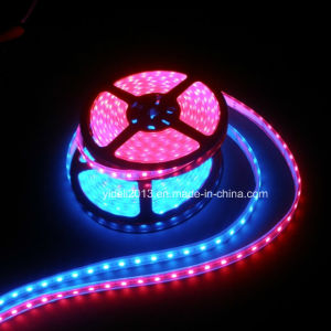 High Lumen 12V 24V DC Flexible Waterproof 120LED/M RGB 3528 SMD LED Strip Light pictures & photos